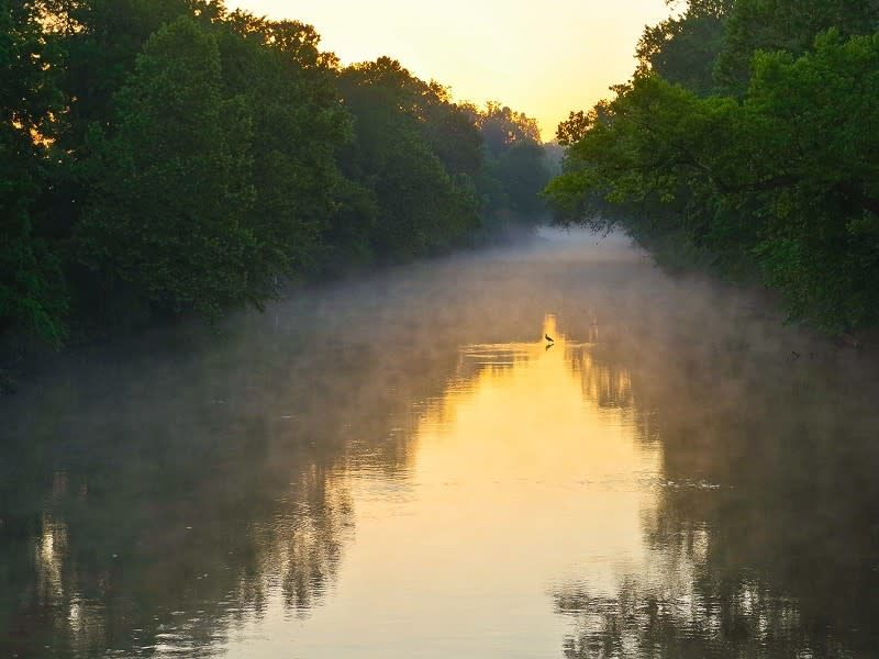 James river sunrise heron  greenway waterway 4 644f81bc5056a34 644f8298 5056 a348 3a4a98f20708e52d