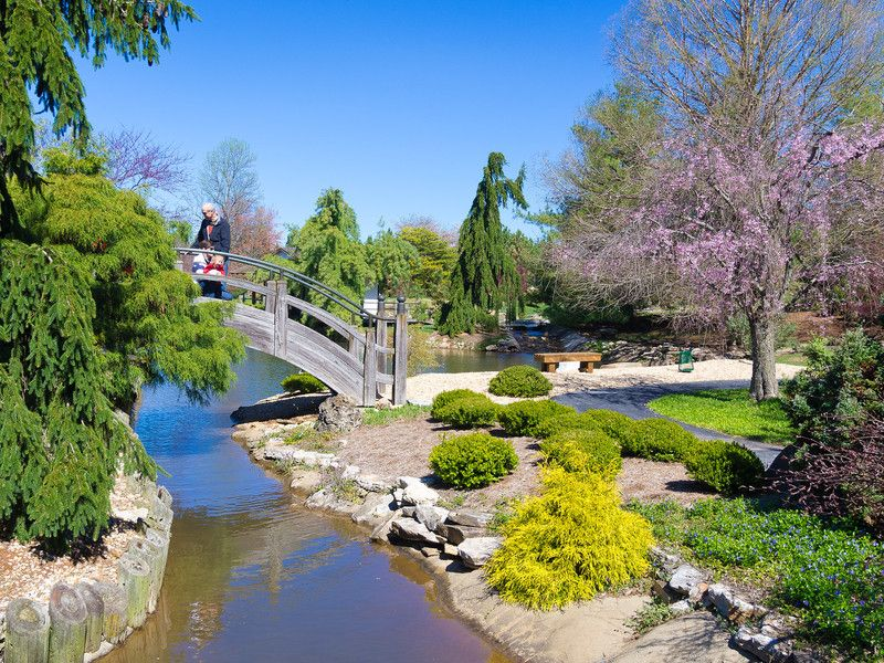 Spring In Springfield Springfield Missouri Travel Tourism Ozarks Midwest Vacations
